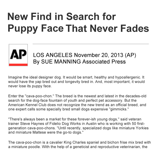 Fidelio-AP-Article-2013